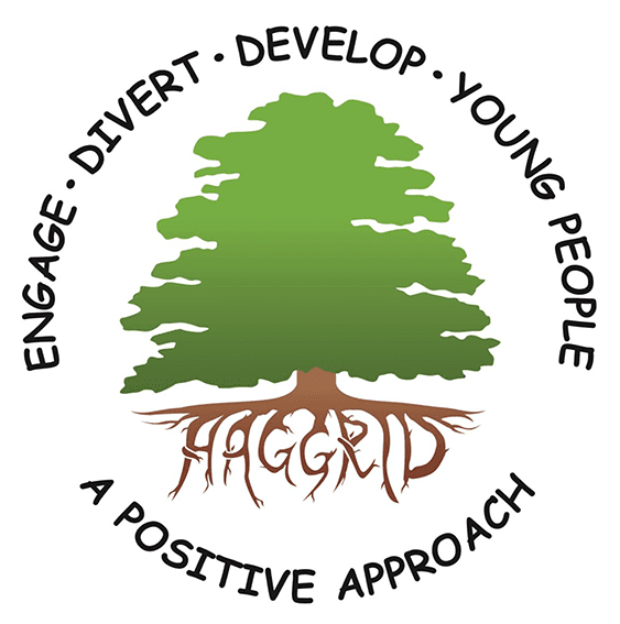A Positive Approach logo